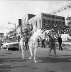 Columbus Day Parade - horse rider at Italian Tribune building by Ace (Armando) Alagna, 1925-2000