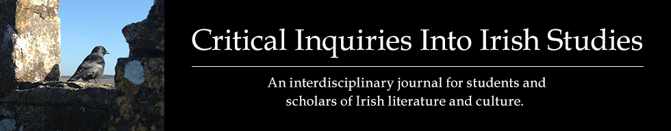 Critical Inquiries Into Irish Studies