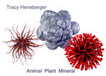 Tracy Heneberger: Animal Plant Mineral