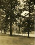 Tennis Courts of Seton Hall College