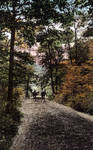 A bridal path in South Mountain Reservation, South Orange, N.J. (color)